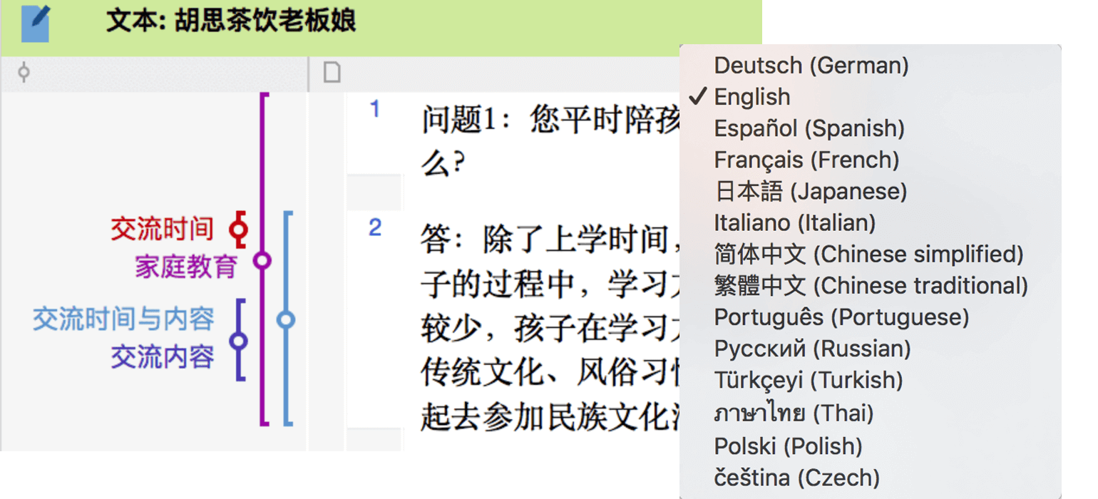 Languages in MAXQDA